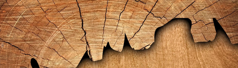 drvo-u-enterijeru-Tarkett